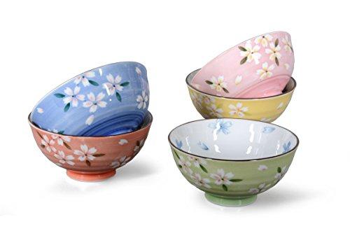 Zekaano Porzellan SchaleDessertschaleMüslischale - Original japanisches Schalen Set 5-teilig Ø 115cm weißbunt Blumendesign Original Aricola