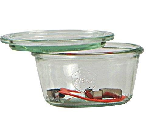 Weck Einmachgläser mit 100 mm Deckel 370 ml inklusive Dichtungen und Klammern Packung mit 6 Stück aus Glas transparent
