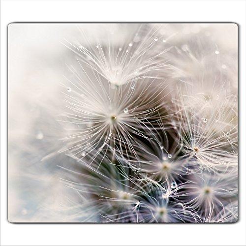 decorwelt  Herdabdeckplatte 60x52 cm Ceranfeldabdeckung 1-Teilig Universal Elektroherd Induktion für Kochplatten Herdschutz Deko Schneidebrett Sicherheitsglas Spritzschutz Glas Pusteblume
