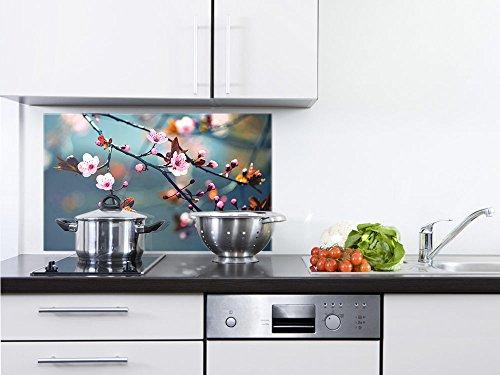 GRAZDesign 200111_80x60_SP Spritzschutz Glas für KücheHerd  Bild-Motiv Kirschblüte im Sommer  Küchenrückwand Küchenspiegel Glasrückwand 80x60cm