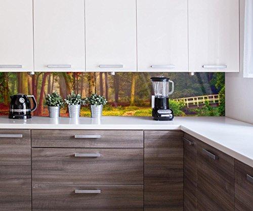 Küchenrückwand Panorama der morgendlichen magischen Licht Nischenrückwand Spritzschutz Design M0900 260 x 50cm B x H - Acrylglas 4mm Rückwand Küche Fotorückwand Küchenbild Bild Foto Motiv