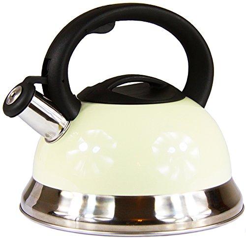 Edelstahl Wasserkocher Teekessel 30 L elegant Pfeifkessel beige Induktion