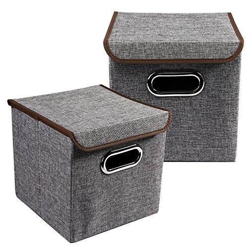 LEADSTAR 2 Stück Faltbare Aufbewahrungsbox Aufbewahrungskorb Faltboxen Spielzeugkiste Truhe mit Deckel 25x25x25cm Grau